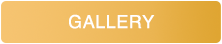 Gallery button